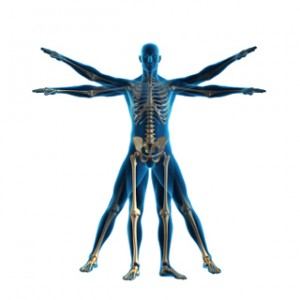 Auto Accident Chiropractor Salem OR